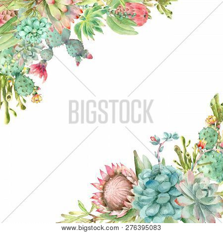 Watercolor Hand Drawn Diagonal Banner. Made By Succulent Plants Isolated On White Background With Pl