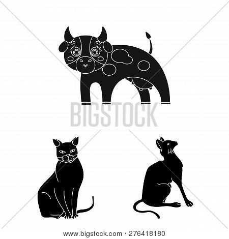 Isolated Object Of Animal And Habitat Sign. Collection Of Animal And Farm Vector Icon For Stock.