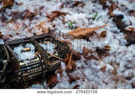 Old Tv Tuner Channel Selector With Moss And Snow In The Forest