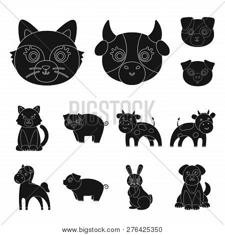 Vector Design Of Animal And Habitat Icon. Set Of Animal And Farm Stock Vector Illustration.