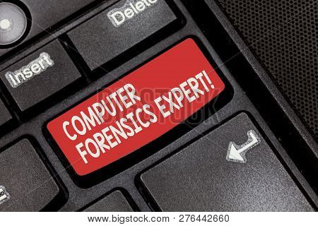 Conceptual Hand Writing Showing Computer Forensics Expert. Business Photo Showcasing Harvesting And