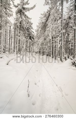 Winter Scenery With Snow Covered Hiking Trail And Frozen Trees Bellow Velky Polom Hill In Moravskosl