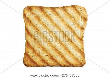 Single Toasted Bread Slice Isolated On White