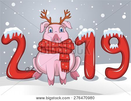 Vector Of Cartoon Pig In Warm Scarf And Reindeer Hairband Among Of The Text Of 2019 And Snowflakes