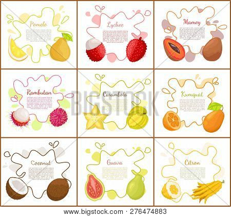 Pomelo And Lychee, Mango Tropical Fruit Slices And Carambola Star. Posters Set With Text Sample, Coc