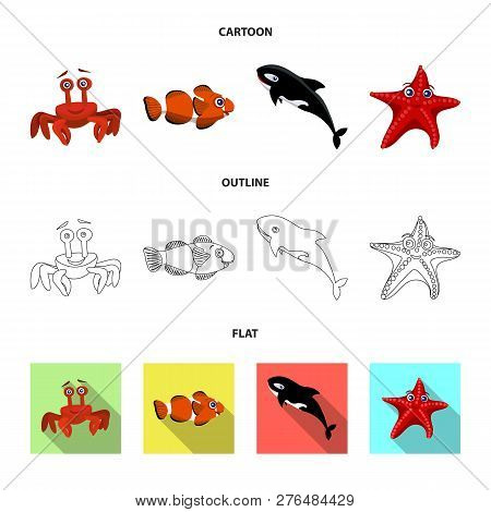Isolated Object Of Sea And Animal Icon. Collection Of Sea And Marine Vector Icon For Stock.