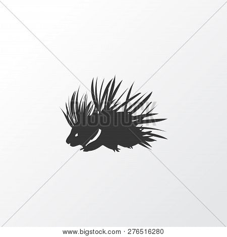 Porcupine Icon Symbol. Premium Quality Isolated Hedgehog Element In Trendy Style.