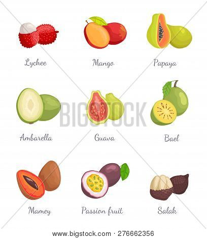 Lychee And Mango, Papaya And Ambarella Fruits Set. Tropical Products With Sweet Taste. Mamey And Bae