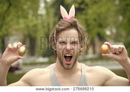 Man In Pink Ears With Gold Eggs, Easter, Valentines Day, Playboy And Sex Games, Finance And Saving,