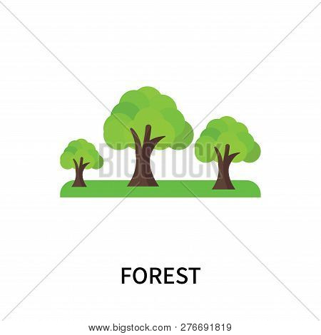 Forest Icon Isolated On White Background. Forest Icon Simple Sign. Forest Icon Trendy And Modern Sym