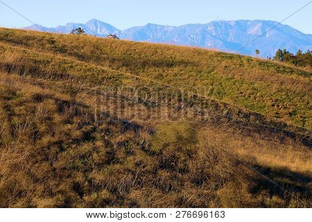 Lush Grasslands On Rolling Hills With The San Gabriel Mountains Beyond Taken In The Rural Whittier H