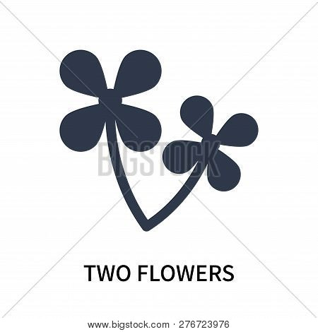 Two Flowers Icon Isolated On White Background. Two Flowers Icon Simple Sign. Two Flowers Icon Trendy