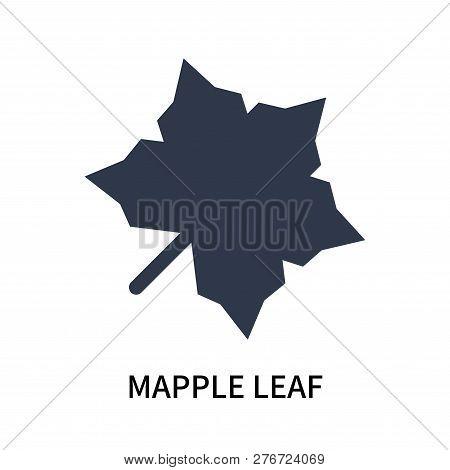 Mapple Leaf Icon Isolated On White Background. Mapple Leaf Icon Simple Sign. Mapple Leaf Icon Trendy