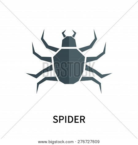 Spider Icon Isolated On White Background. Spider Icon Simple Sign. Spider Icon Trendy And Modern Sym