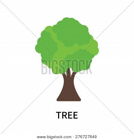 Tree Icon Isolated On White Background. Tree Icon Simple Sign. Tree Icon Trendy And Modern Symbol Fo