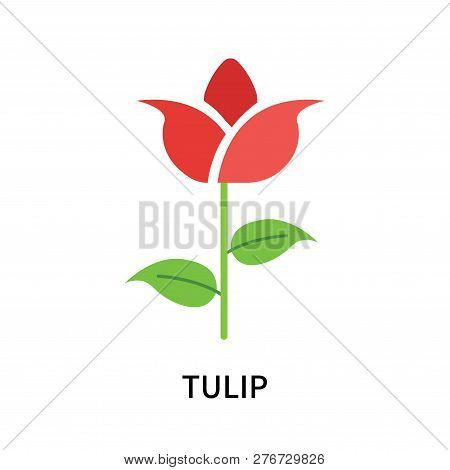 Tulip Icon Isolated On White Background. Tulip Icon Simple Sign. Tulip Icon Trendy And Modern Symbol