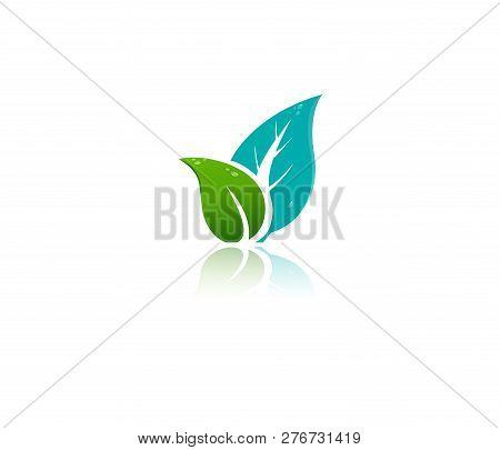 Green Leaf Vector Icons, Natural, Bio, Eco, Bio, Organic, Nature Green Fresh Leaves Elements. Eco Na