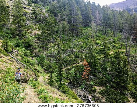 A Young Female Hiker Navigating The Forests, Rocky Mountain Terrain, And Snow Covered Valleys Of The