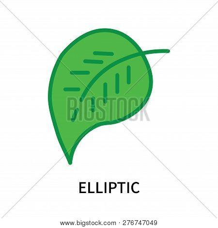 Elliptic Icon Isolated On White Background. Elliptic Icon Simple Sign. Elliptic Icon Trendy And Mode