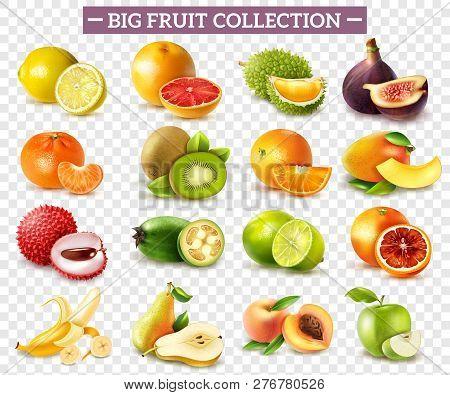 Realistic Set Of Various Kinds Of Fruits With Orange Kiwi Pear Lemon Lime Apple Isolated On Transpar
