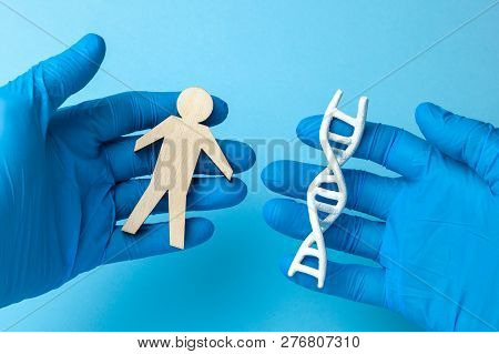 Dna Helix Research. Concept Of Genetic Experiments On Human Biological Code Dna. The Scientist Is Ho