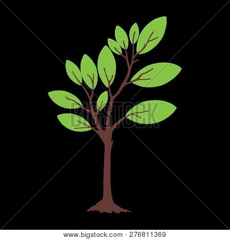 Tree With Green Leaves With Black Background. Vector Tree Icon. Tree Forest, Leaf Tree Isolated, Tre