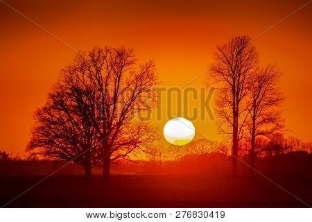 Silhouette Of Trees In Sunset. Trees At Sunset. Beautiful Spring Landscape In Latvia. Beautiful Land