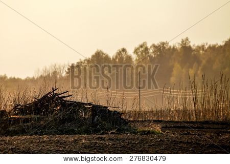Spring Landscape With Plowed Field And Branch Stack. Plowed Cereal Field With Mist In Spring. Classi