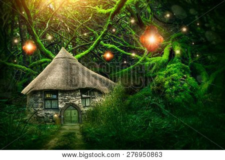 Fairy forest with a small house