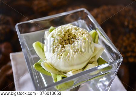 White Lotus Single Flower In Glass Vase With Fresh Water On The Table. Summer, Spring Blooming Natur