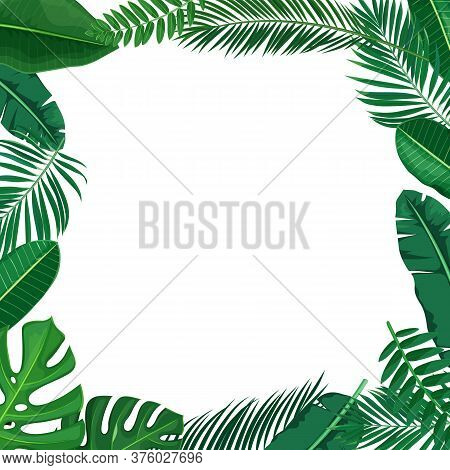 Green Tropical Leaves Frame. Jungle Exotic Leaf Border Philodendron, Areca Palm, Royal Fern, Plumeri
