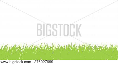 Grass Seamless Border. Horizontal Banner Of Green Spring Grassland Meadow Silhouettes With Short Gra