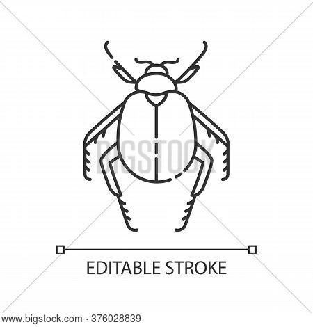 Scarab Beetle Pixel Perfect Linear Icon. Small Arthropod, Egyptian Bug, Desert Inhabitant. Thin Line