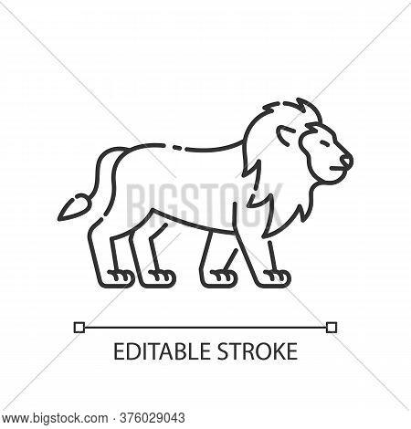 Lion Pixel Perfect Linear Icon. Too Inhabitant. African Safari, Savanna Thin Line Customizable Illus