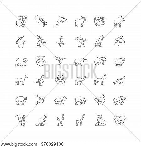 Wildlife Pixel Perfect Linear Icons Set. Animals And Tropical Wild Life Customizable Thin Line Conto