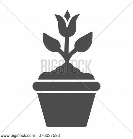 Flower In Flowerpot Solid Icon, Floral Concept, Plant In Flowerpot Sign On White Background, Potted