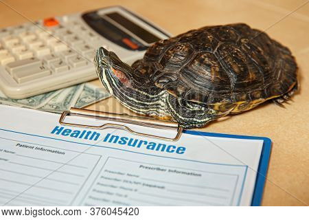 Health Insurance With Insurance Claim Form, Stethoscope And Red-eared Turtle. Health Insurance Conce
