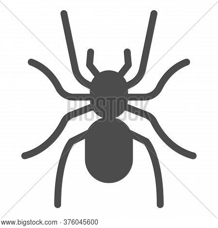 Tarantula Solid Icon, Insects Concept, Scary Big Spider Sign On White Background, Dangerous Tarantul