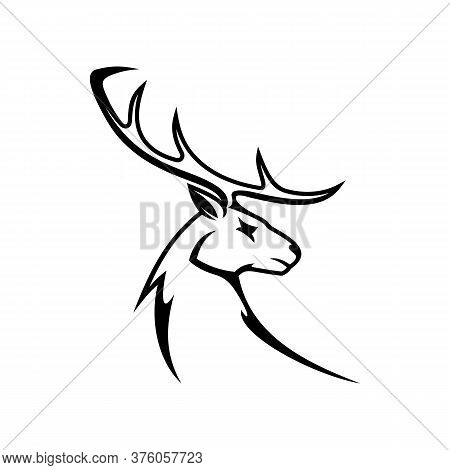 Deer Animal With Antlers Isolated Profile Head. Vector Whitetail Reindeer, Elk Or Moose Mascot
