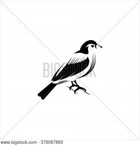Finch Vector Artistic Bird In Flat Black Color Illustration For Clip Art, Animal Logo Design Templat