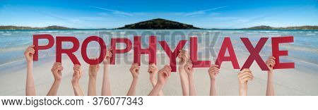 People Hands Holding Word Prophylaxe Means Prophylaxis, Ocean Background