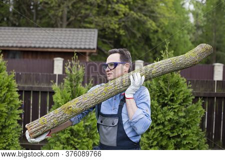 Hadsome Man Woodcutter In Working Uniform Carries Sawn Tree Trunk On His Shoulder To Warehouse Of Wo
