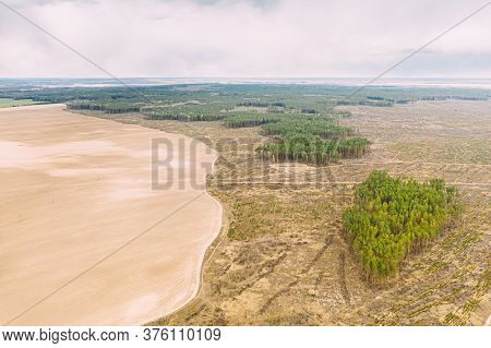 Aerial View Of Field And Deforestation Area Landscape. Green Pine Forest In Deforestation Zone. Top