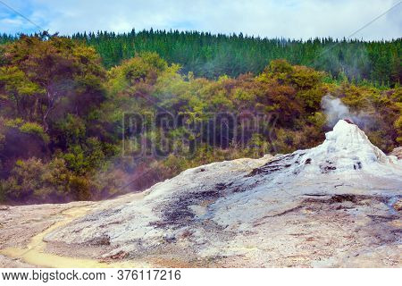 The famous Lady Knox geyser.The Waimangu Volcanic Rift Valley, North Island, New Zealand. Volcanic vapor. The beginning of a daily eruption. The concept of exotic, ecological and photo tourism