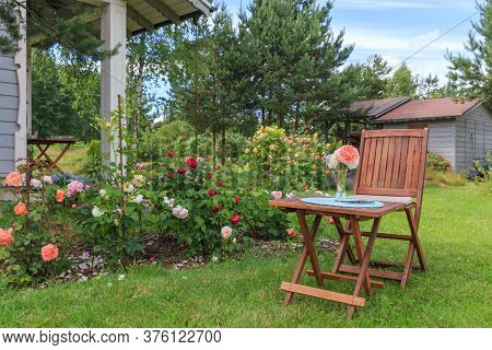 Romantic Sitting Area In The Rose Garden, Round Wooden Table And Chairs Near The Large Flowering Bus