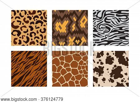 Animal Skins. Pattern Of African Jungle Animals Leopard Tiger Zebra Giraffe Vector Seamless Backgrou