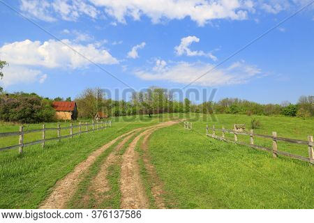 landscape with rural rut road on green meadow