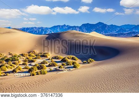 California. Easily accessible dunes are located along Road 190. Magical desert morning. Mesquite Flat Sand Dunes - dunes in Death Valley. USA. The concept of extreme, active and photo tourism