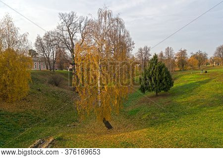 Autumn In Tsaritsyno Park. Large Birch With Flying Yellow Leaves At The Bottom Of The Ravine. Cloudy