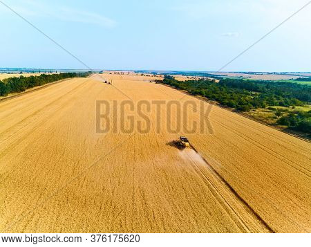 Aerial Drone View: Combine Harvesters Working In Wheat Field On Sunset Round About. Harvesting Machi